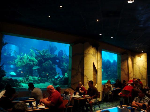 coral-reef-dining-room2